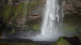 Panorama della cascata, arcobaleno nello spruzzo di acqua Bella natura dell'Islanda archivi video