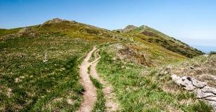 Panorama della catena montuosa di Mala Fatra durante l'escursione alla collina di Velky Krivan in Slovacchia Fotografia Stock