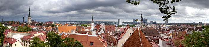 Panorama della città da una piattaforma di osservazione dei tetti della vecchia città tallinn L'Estonia fotografia stock libera da diritti