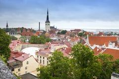 Panorama della città da una piattaforma di osservazione di vecchi tetti del ` s della città tallinn L'Estonia fotografie stock libere da diritti