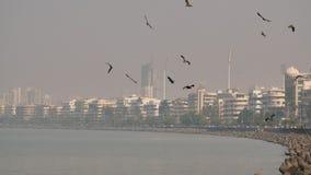 Panorama della citt? di Mumbai nella foschia L'India stock footage