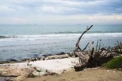 Panorama della costa di mare Fotografia Stock