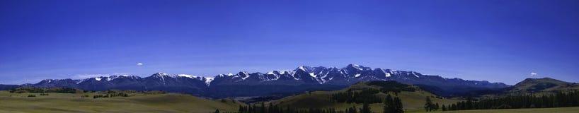 Panorama della cresta di Nord-Chuya nelle montagne di Altai Fotografie Stock