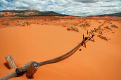 Panorama della duna di sabbia dentellare Immagine Stock Libera da Diritti