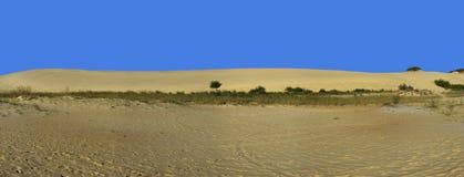 Panorama della duna e del cielo blu di sabbia Fotografie Stock