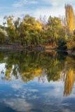 Panorama della foresta del lago del paesaggio di autunno Fotografia Stock Libera da Diritti