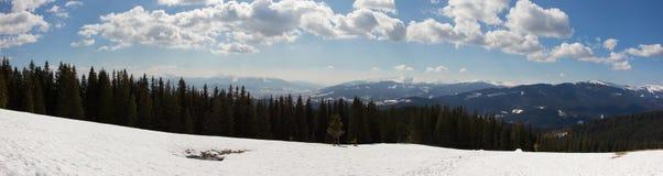Panorama della foresta e delle montagne Immagini Stock Libere da Diritti