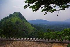 Panorama della giungla Immagini Stock