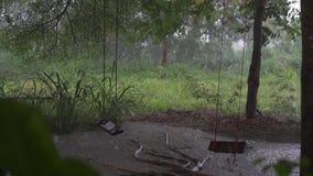 Panorama della giungla verde durante la pioggia tropicale Alberi verdi della giungla e palme, nebbia e pioggia tropicale Svuoti l archivi video