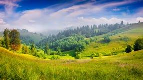 Panorama della mattina nebbiosa di estate in montagne Fotografia Stock