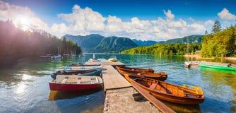 Panorama della mattina soleggiata di estate sul lago Bohinj Fotografia Stock