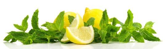 Panorama della menta e del limone immagini stock