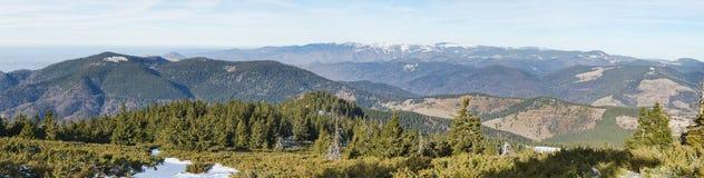 Panorama della montagna Immagine Stock