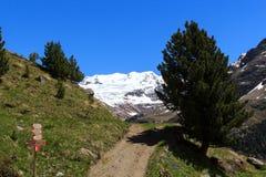 Panorama della montagna del ghiacciaio di Forni, cartello e percorso di escursione nelle alpi di Ortler Fotografia Stock