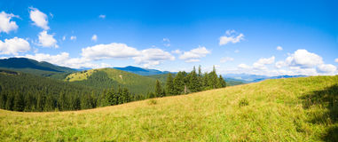 Panorama della montagna di estate. Immagini Stock Libere da Diritti