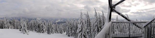 Panorama della montagna di inverno Immagine Stock Libera da Diritti