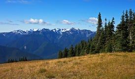 Panorama della montagna olimpica Fotografia Stock
