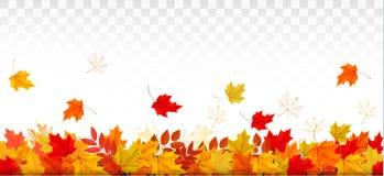 Panorama della natura di autunno con le foglie variopinte illustrazione di stock