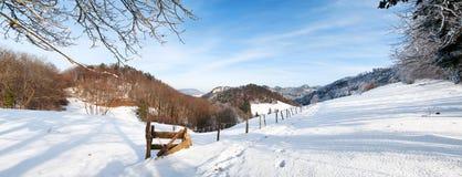 Panorama della neve Immagine Stock