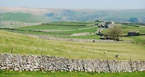 Panorama della parete di pietra - vallate del Yorkshire (Regno Unito) Fotografia Stock Libera da Diritti