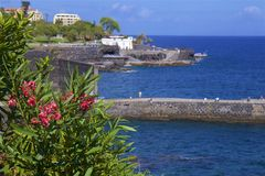 Panorama della passeggiata di Funchal, Madera immagine stock libera da diritti