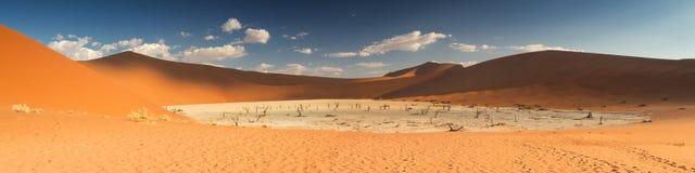 Panorama della pentola morta del sale di Vlei Fotografia Stock Libera da Diritti