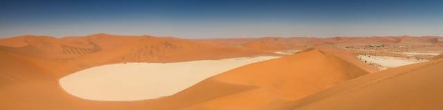 Panorama della pentola morta del sale di Vlei Fotografia Stock