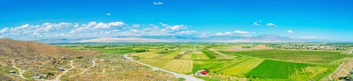 Panorama della pianura dell'Ararat Fotografie Stock