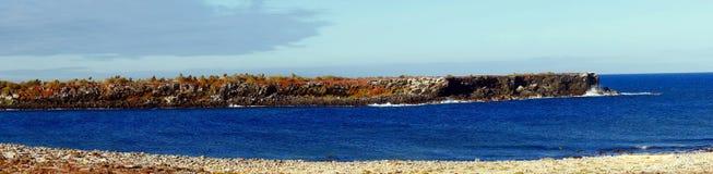 Panorama della plaza del nord di Isla nel Galapagos Immagine Stock Libera da Diritti