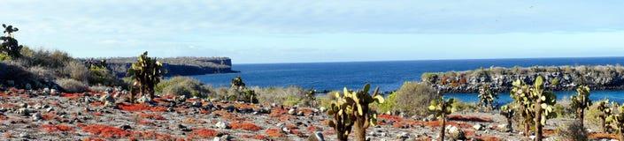 Panorama della plaza di Islas nel Galapagos Immagine Stock Libera da Diritti