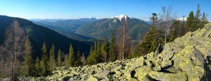 Panorama della primavera di un lago della foresta immagini stock libere da diritti