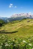 Panorama della regione di Adige del negativo per la stampa di cartamoneta in Italia del Nord su estate Immagini Stock Libere da Diritti