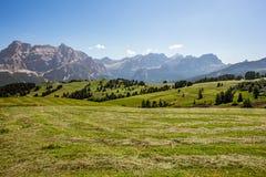 Panorama della regione di Adige del negativo per la stampa di cartamoneta in Italia del Nord su estate Fotografia Stock Libera da Diritti