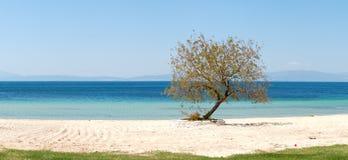 Panorama della spiaggia all'albergo di lusso Immagine Stock