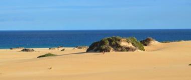 Panorama della spiaggia alle isole Canarie di Fuerteventura Fotografia Stock