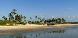 Panorama della spiaggia selvaggia in Goa del sud Fotografie Stock Libere da Diritti
