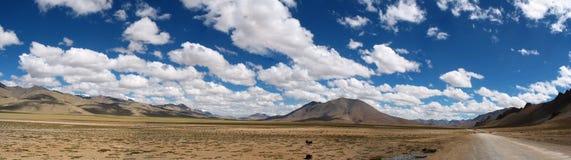 Panorama della strada del deserto Immagine Stock