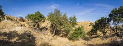 Panorama della traccia del canyon di California fotografie stock libere da diritti