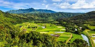 Panorama della valle di Hanalei Immagini Stock