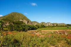 Panorama della valle di Vinales con il Mogotes Fotografia Stock Libera da Diritti