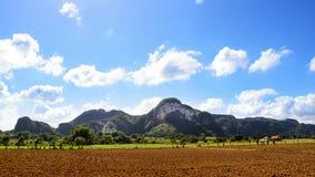 Panorama della valle di Vinales con il Mogotes Immagine Stock