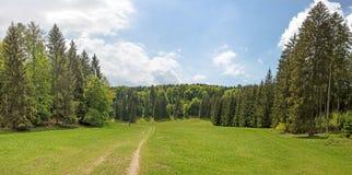 Panorama della valle di Wental Immagine Stock Libera da Diritti
