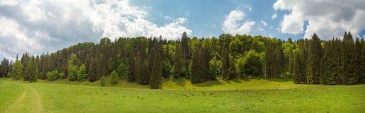 Panorama della valle di Wental Fotografia Stock