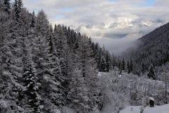 Panorama delle alpi di Stubai dell'austriaco con le catene montuose ed alberi coperti in neve e cielo blu e nuvole nell'inverno Fotografia Stock