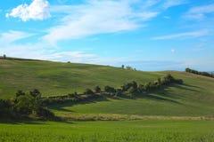 Panorama delle colline toscane verdi su un landscapte di giorno soleggiato in Ital fotografia stock libera da diritti