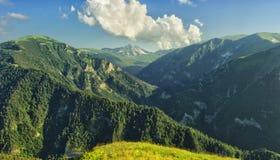 Panorama delle montagne boscose con i canyon Fotografia Stock