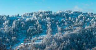 Panorama delle montagne carpatiche di inverno Fotografie Stock Libere da Diritti