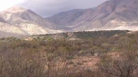 Panorama delle montagne del deserto stock footage