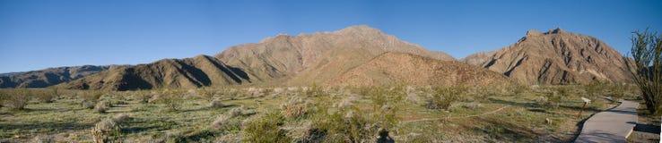 Panorama delle montagne del deserto Fotografia Stock Libera da Diritti