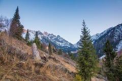 Panorama delle montagne, della neve e del cielo blu di verde della natura in Chimbulak, il Kazakistan Immagini Stock